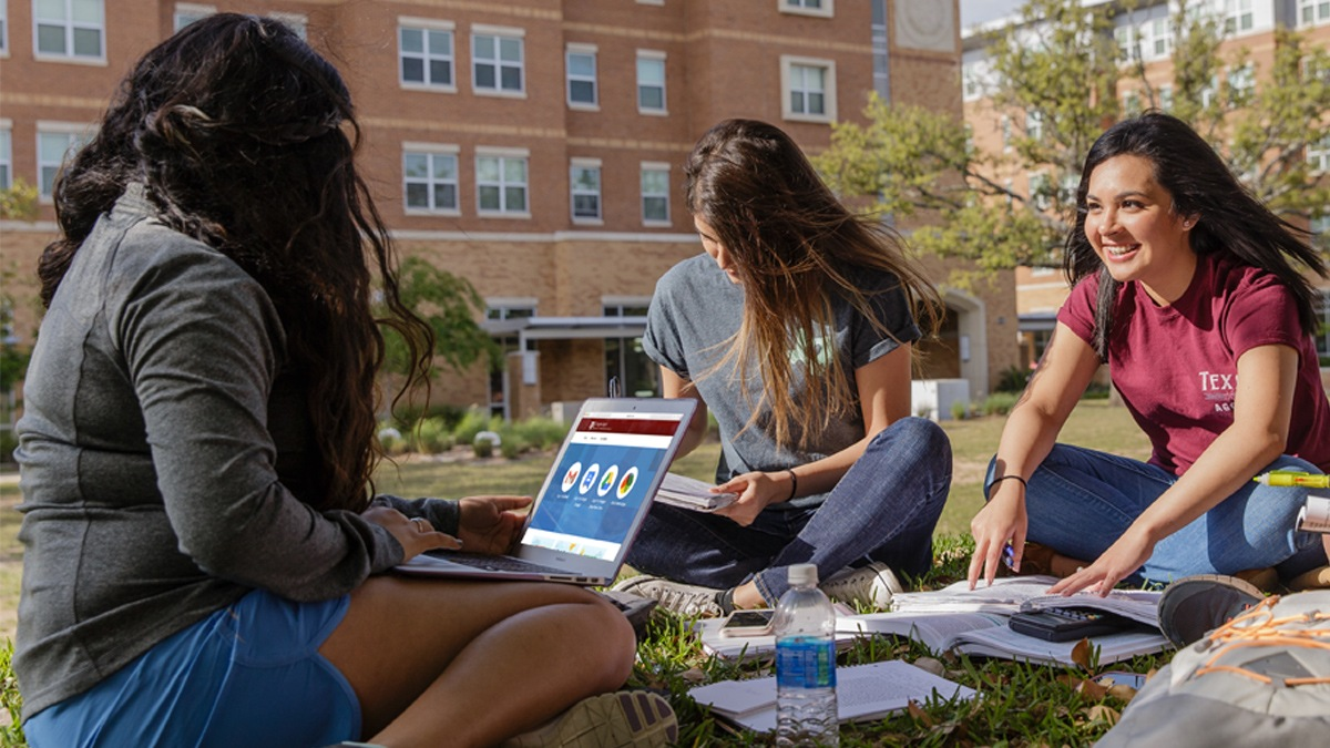 Group of female students working on homework on the lawn outside of Hullabaloo.